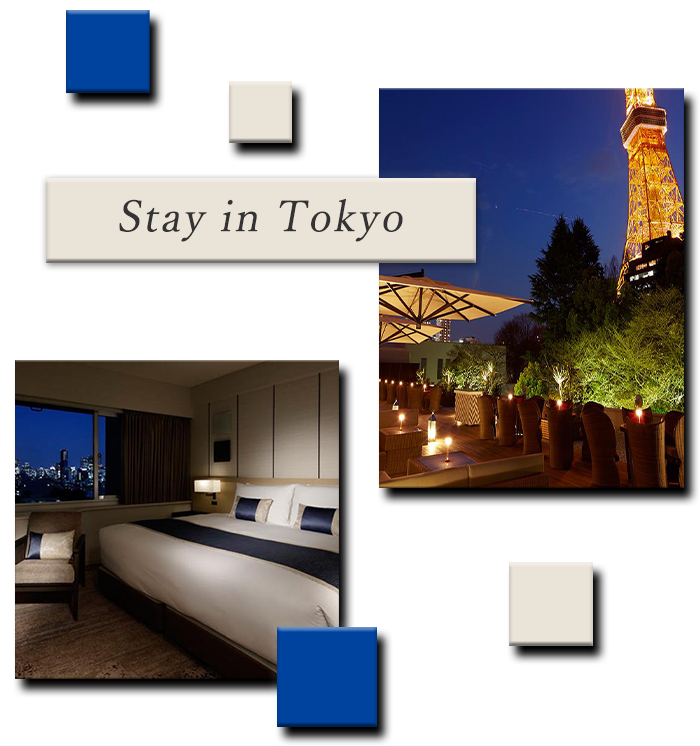 Stay in Tokyo